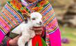 Leinwanddruck Bild - Peruvian women with little alpaca lamb