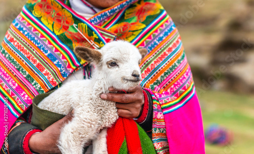 Foto op Plexiglas Lama Peruvian women with little alpaca lamb