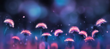 Fabulous Amazing Bright Pink Dandelions On A Blue And Purple Background In The Rays Of Light. Summer Background. Free Space For Text. Banner.