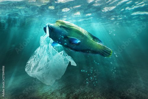 Poster Tortue Plastic pollution in ocean environmental problem. Fish can eat plastic bags.