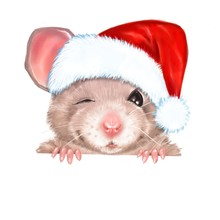 Illustration Of Dressed Rat With Red Sants Hat. For New Year Card