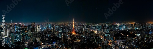 The most beautiful Viewpoint Tokyo tower in tokyo city ,japan. Wallpaper Mural