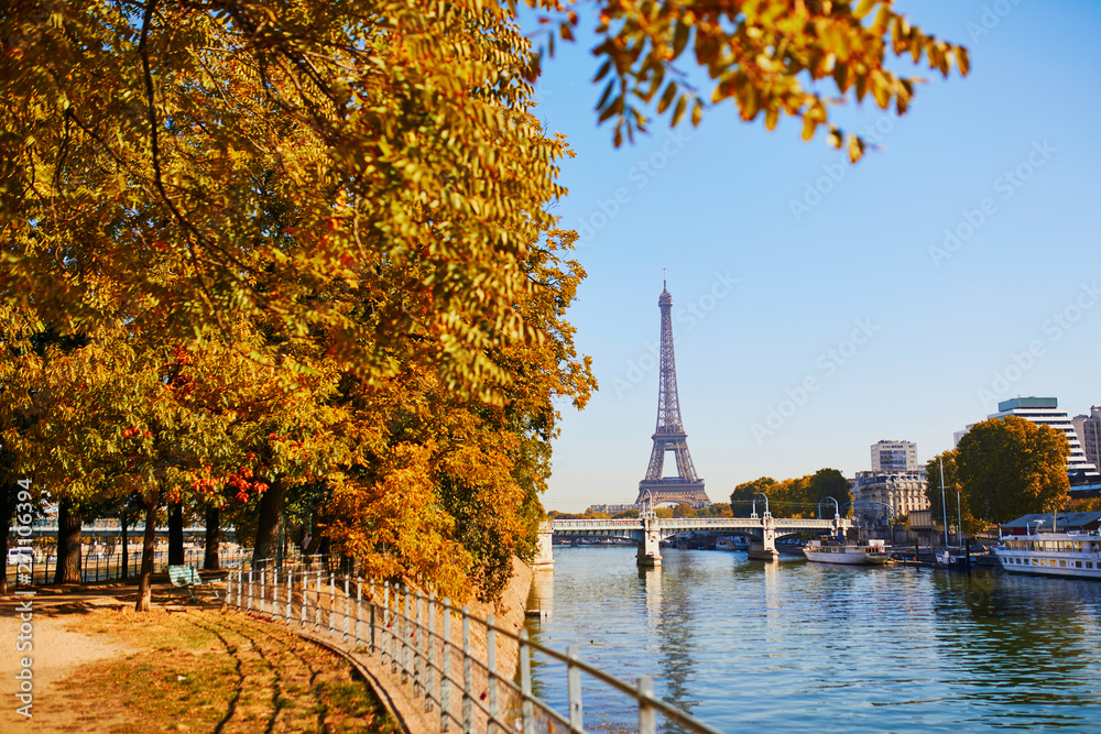 Fototapeta Scenic view to the Eiffel tower over the river Seine
