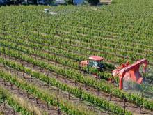 Farm Tractor Spraying Pesticid...