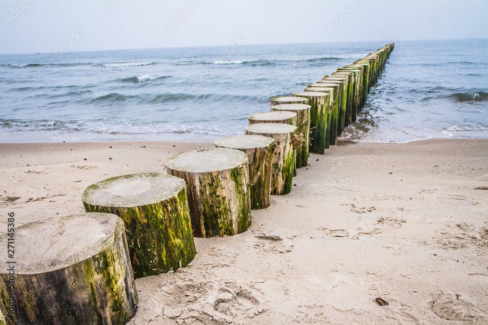 Fototapeta Raw of Wooden Breakwaters at a seaside