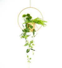 Hanging Plant In A Wire Plante...