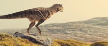Carnotaurus On Field