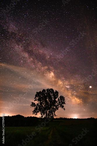 Obraz The summer Milky Way in Weissenhorn, Germany - Tree in front - fototapety do salonu