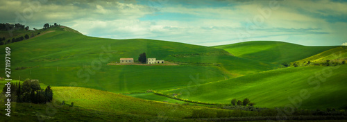 Foto op Plexiglas Groene Hill with field in south Italy 4