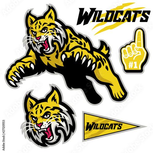 Fényképezés athletic sport mascot style of wildcats in set