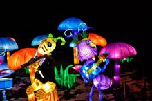 Flashlights Ants Musicians Among Mushrooms