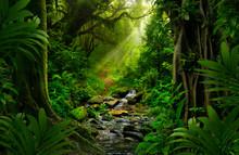 Southeast Asian Rainforest With Deep Jungle