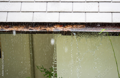 Fototapeta Close up on section of rain gutter clogged with leaves, debris on residential home during the rain obraz