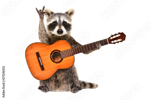 Funny raccoon with  acoustic guitar, showing a rock gesture, isolated on white background - 271246352