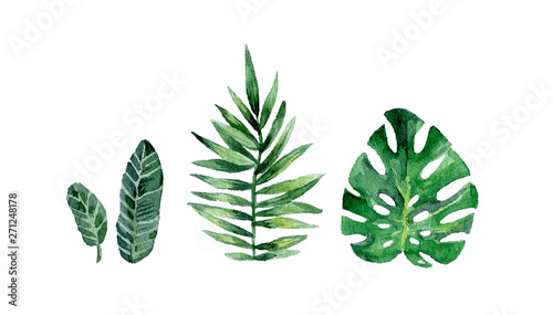 Fototapeta Watercolor summer set with tropical leafs. Hand drawn vintage clip art. Exotic collection isolated on white background obraz na płótnie