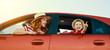 Leinwandbild Motiv happy family mother and child boy goes to summer travel trip in car
