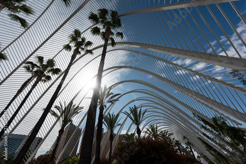 Tuinposter Stadion Valencia - the city of arts and Sciences
