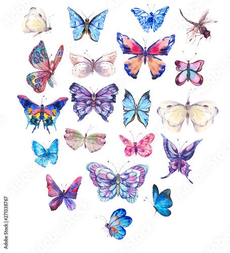Fotografie, Obraz  Watercolor butterflies vintage card, Ultraviolet butterfly