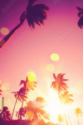 Photo Stands Asia Country Tropical palm tree with colorful bokeh sun light on sunset sky cloud abstract background.