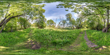 Full Seamless Spherical Hdri Panorama 360 Degrees Angle View On Cycling And Pedestrian Walking Path Among The Bushes Of Forest In Equirectangular Projection, Ready VR AR Virtual Reality Content