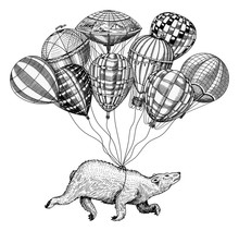 Polar Bear Flies On Air Balloo...