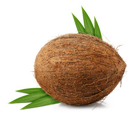 coconut with leaf isolated on white background clipping path