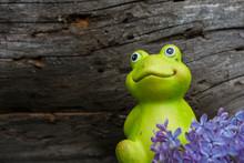 Decorative Frog In The Garden....