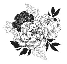 Background With Peony Flowers. Floral Comtosition. Hand Drawn Elements Converted To Vector