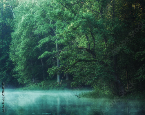 Papiers peints Rivière de la forêt misty lake