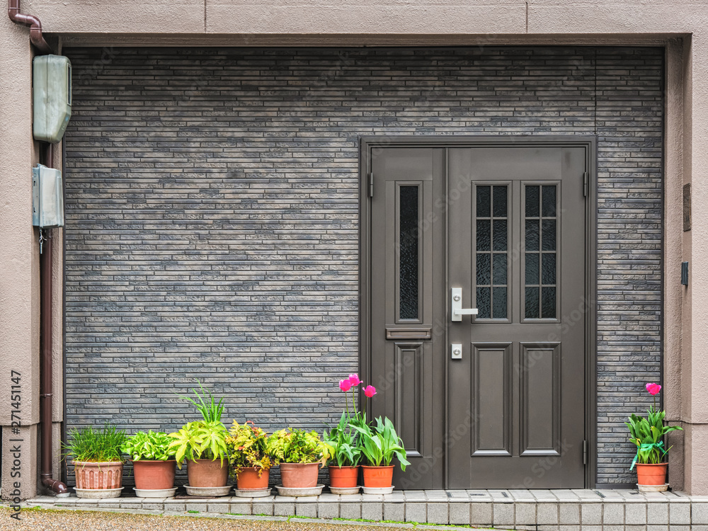 Fototapeta Gray front door with small square decorative windows and flower pots in fron of it