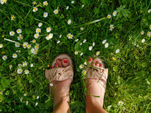 Top View Photo Of Woman Feet I...