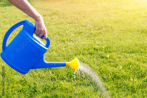Fotografia watering a green lawn from a blue watering can on a sunny summer morning