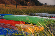 Colorful Kayaks In Beach Grass With Morning Sun Glow