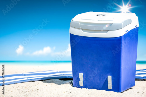 La pose en embrasure Fleur Summer time on beach and blue beach fridge on sand. Ocean landscape and sunny day.