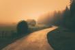 Leinwandbild Motiv vintage nature landscape with a foggy path