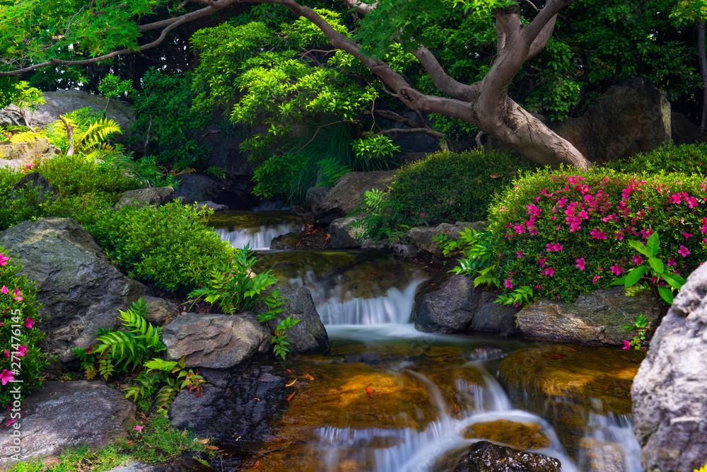 Fototapeta Beautiful japanese garden with small waterfall