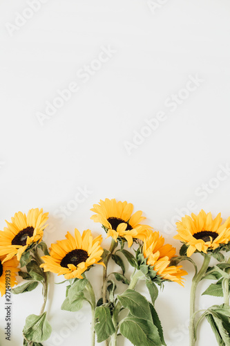 Fotografia  Sunflowers on white background. Flat lay, top view.