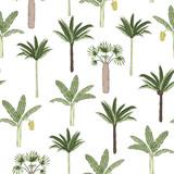 Wektorowy bezszwowy wzór palmowi i bananowi drzewa na białym tle. Latem lub wiosną powtarzaj tropikalny wzór tła. Ozdoba egzotycznej dżungli - 271500793