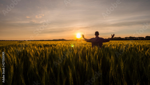 Fototapeta Silhouette of a farmer standing in a field with arms raised obraz