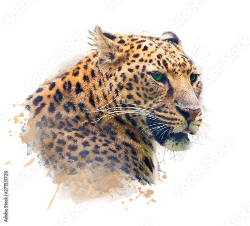 Portrait of Leopard .Watercolor illustration