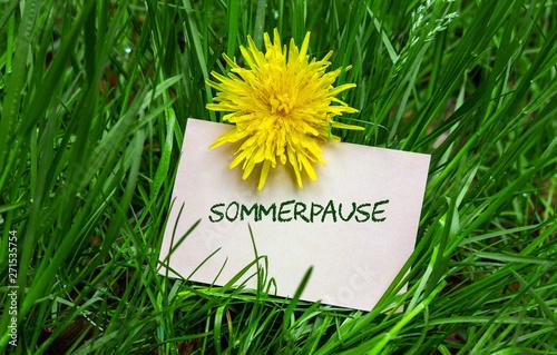 Foto auf Leinwand Lowenzahn Sommerpause