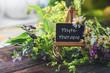 Leinwandbild Motiv Schild mit Heilpflanzen: Phytotherapie