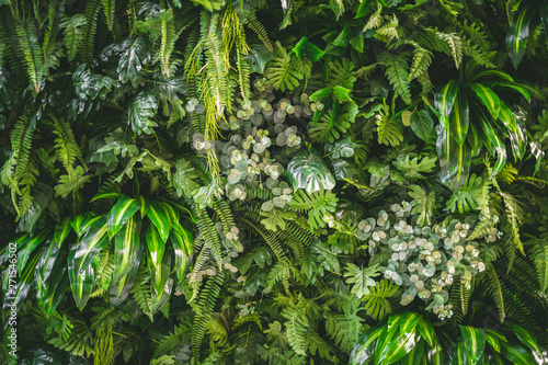 Spoed Foto op Canvas Planten walll full of variety of green leaf topical plants some with flowers for background use.
