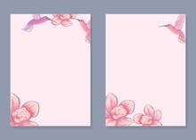 Card Templates. Pink Card With Hummingbirds