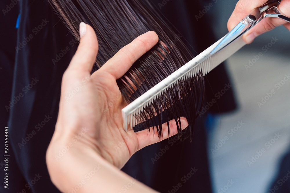 Fototapeta Hairdresser cutting and styling hair of woman in her shop