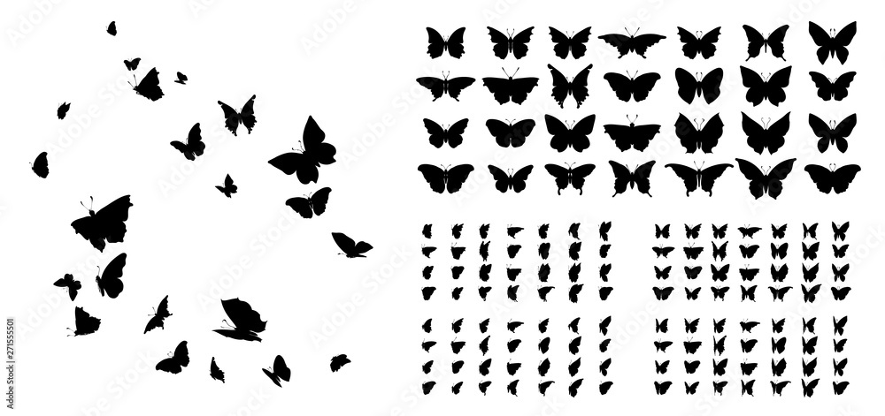 Fototapeta Set of butterflies, ink silhouettes. Glowworms, fireflies and butterflies icons isolated on white background. Hand drawn elements, Vector illustration.