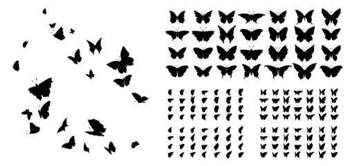 Set leptira, siluete tinte. Ikone glowworms, krijesnice i leptiri izolirane na bijeloj pozadini. Ručno nacrtani elementi, vektorska ilustracija.