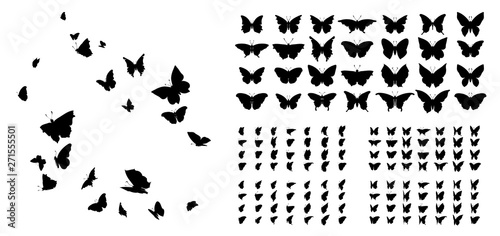 Cuadros en Lienzo Set of butterflies, ink silhouettes