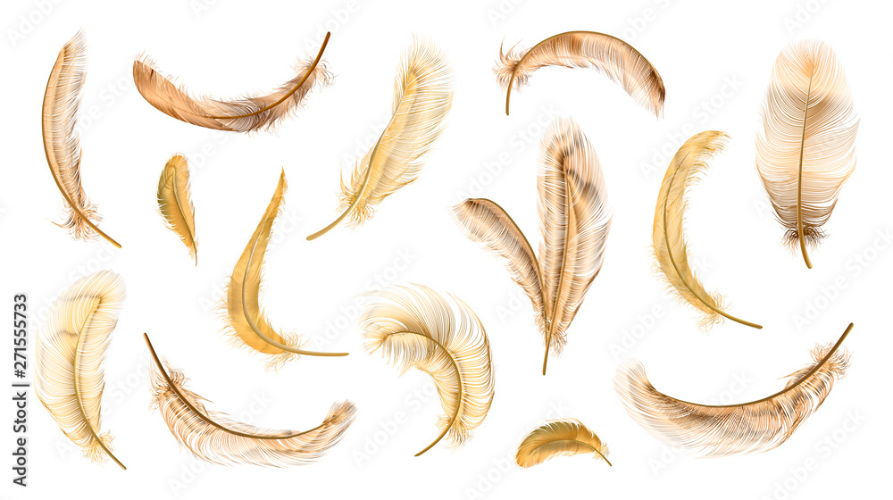 Fototapety, obrazy: Vector feathers collection, set of different falling fluffy twirled feathers, isolated on transparent background. Realistic style, vector 3d illustration