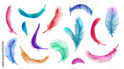 Cuadros en Lienzo Vector feathers collection, set of different falling fluffy twirled feathers, isolated on transparent background